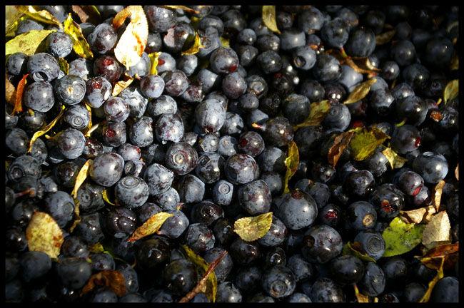 Aliments Riches En Potassium - SOINSAUNATUREL